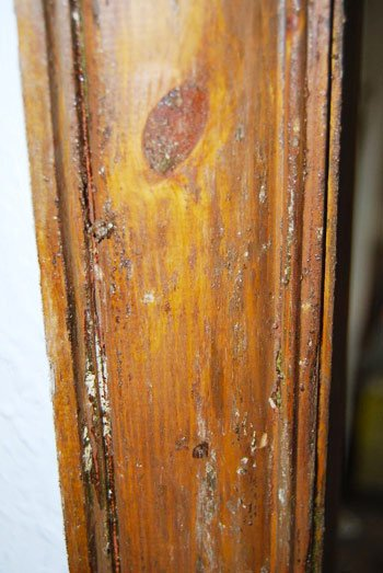 Stripped Door Frame