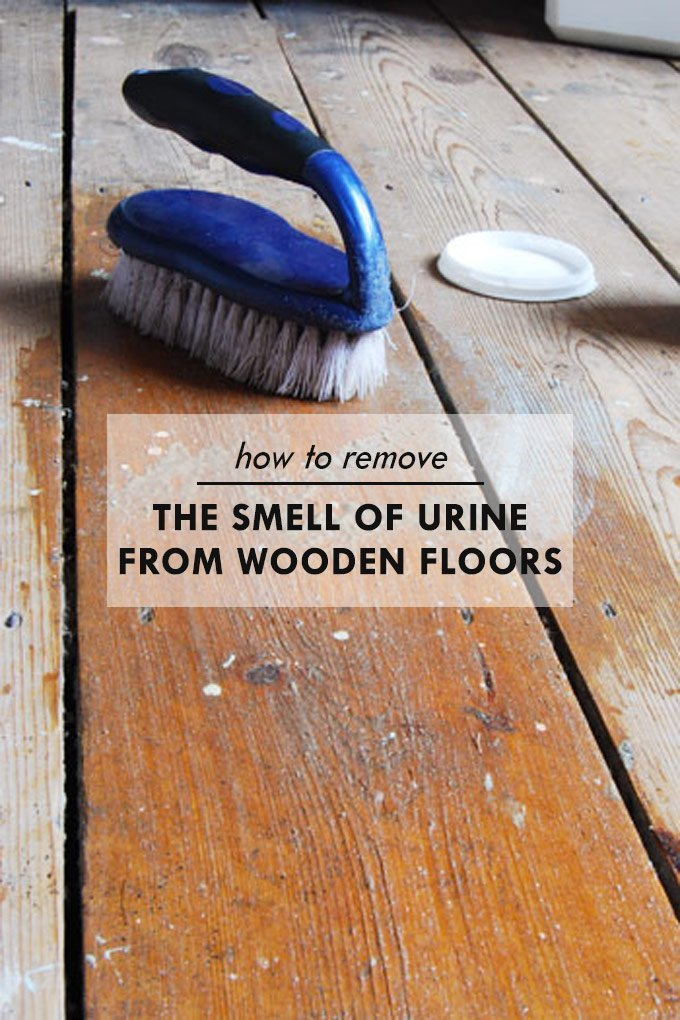 How To Remove The Smell Of Urine From Wooden Floors