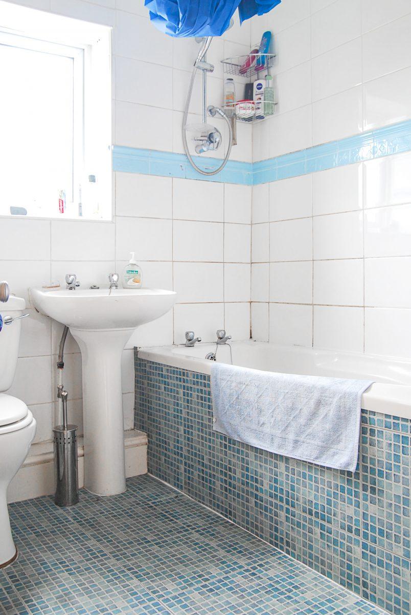 Small Bathroom Temporary Update