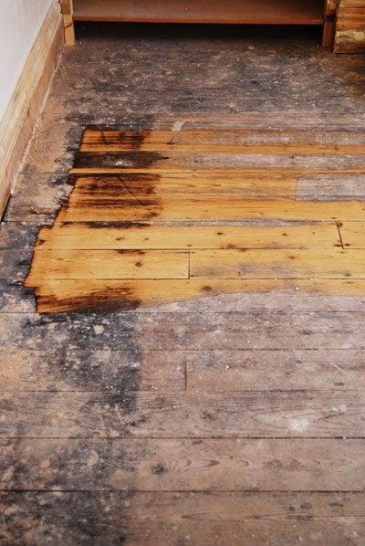 australian boards floor flooring se beech floors floorboards traditional solid timber