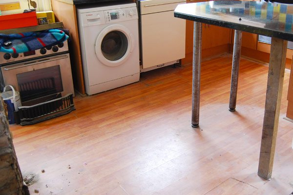 Laminate Floor Removal
