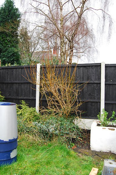 painted garden fence