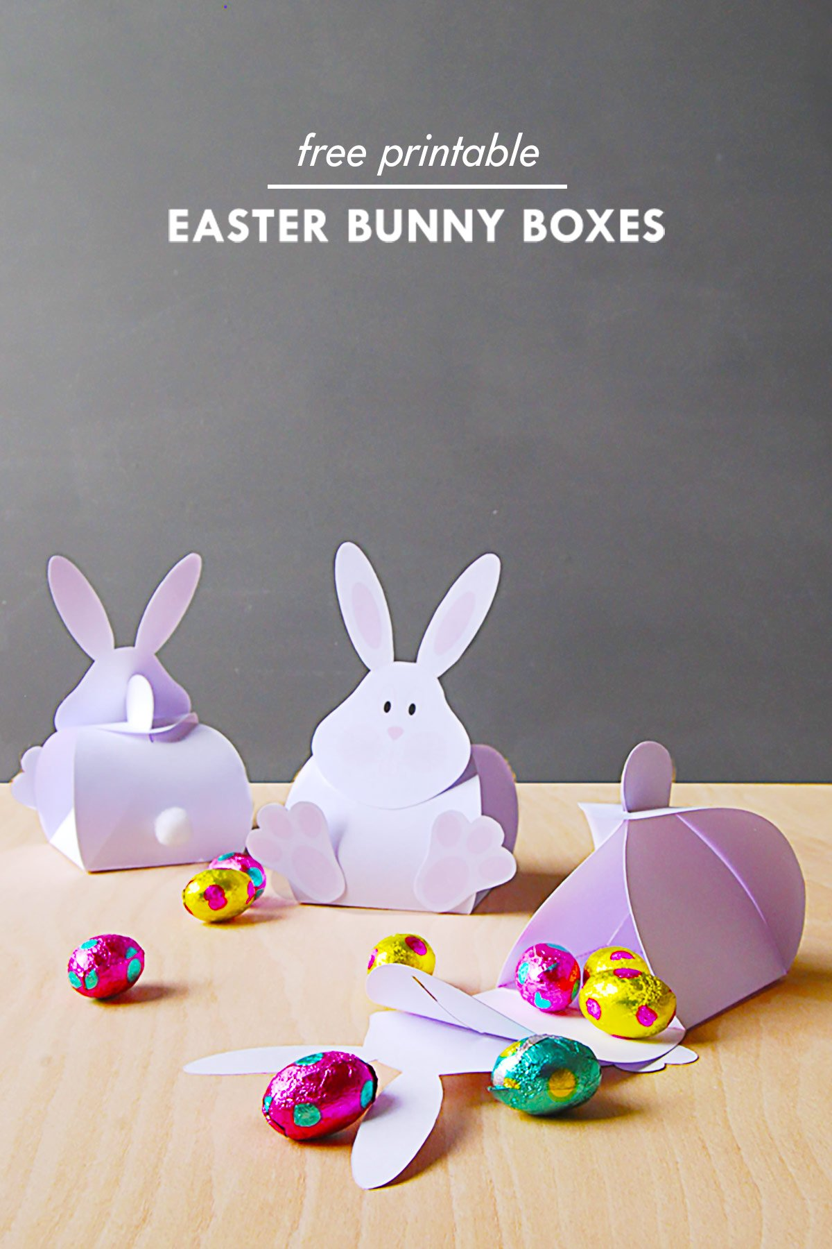 photograph about Easter Bunny Printable called Do it yourself Easter Bunny Carrot Bins