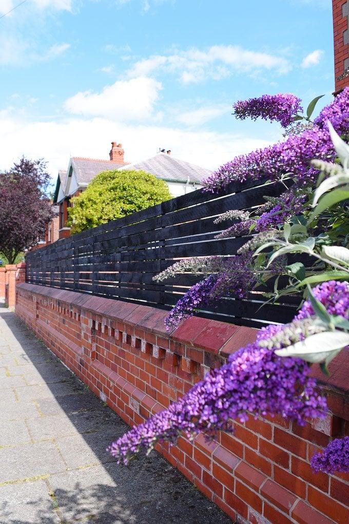 Slatted Garden Fence