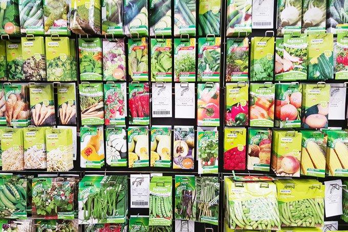 Choosing Vegetable Seeds
