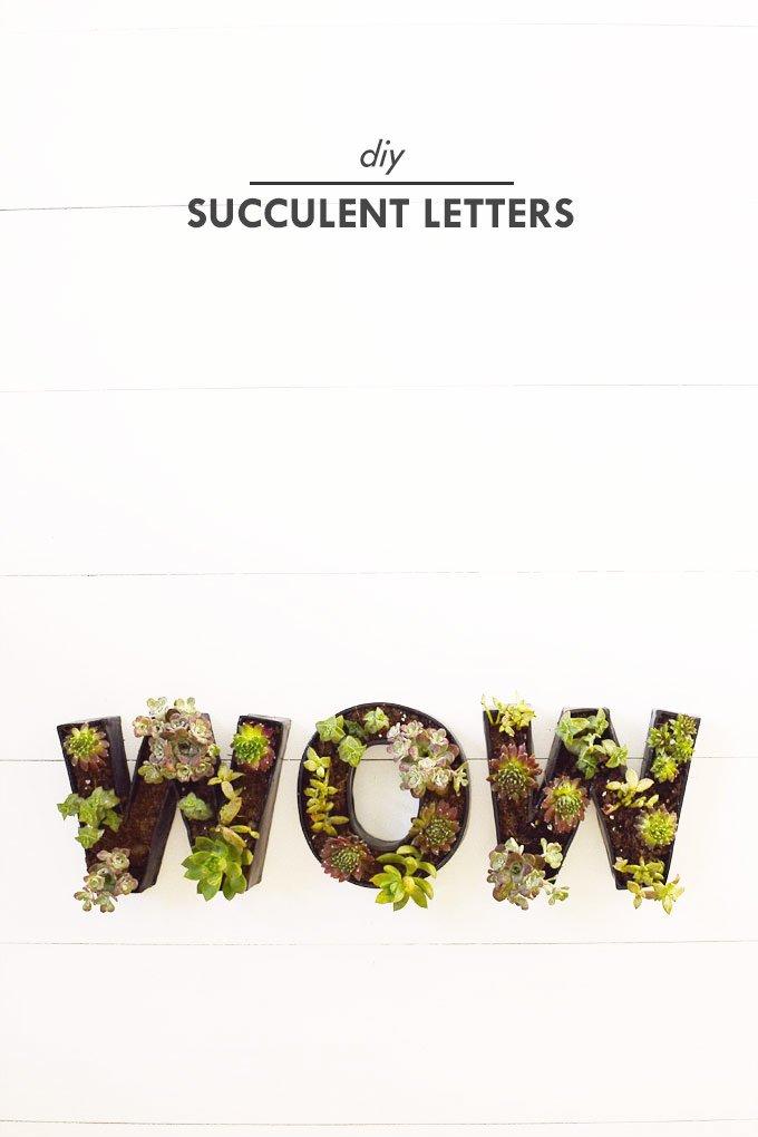 DIY Succulent Letter