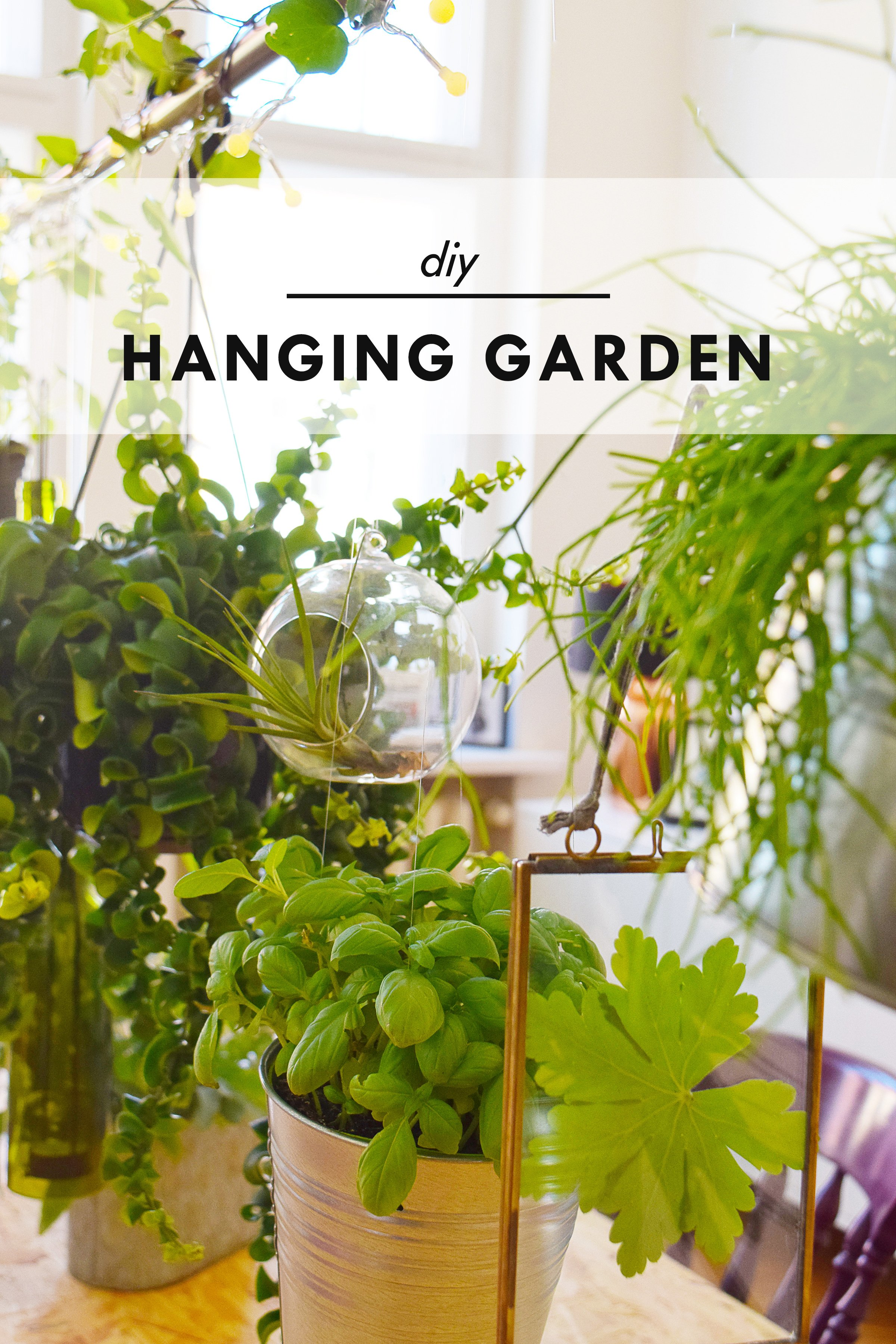 DIY Hanging Garden - Build Your Own Hanging Garden And Enjoy The Benefits Of Houseplants In Your Home - Little House On The Corner