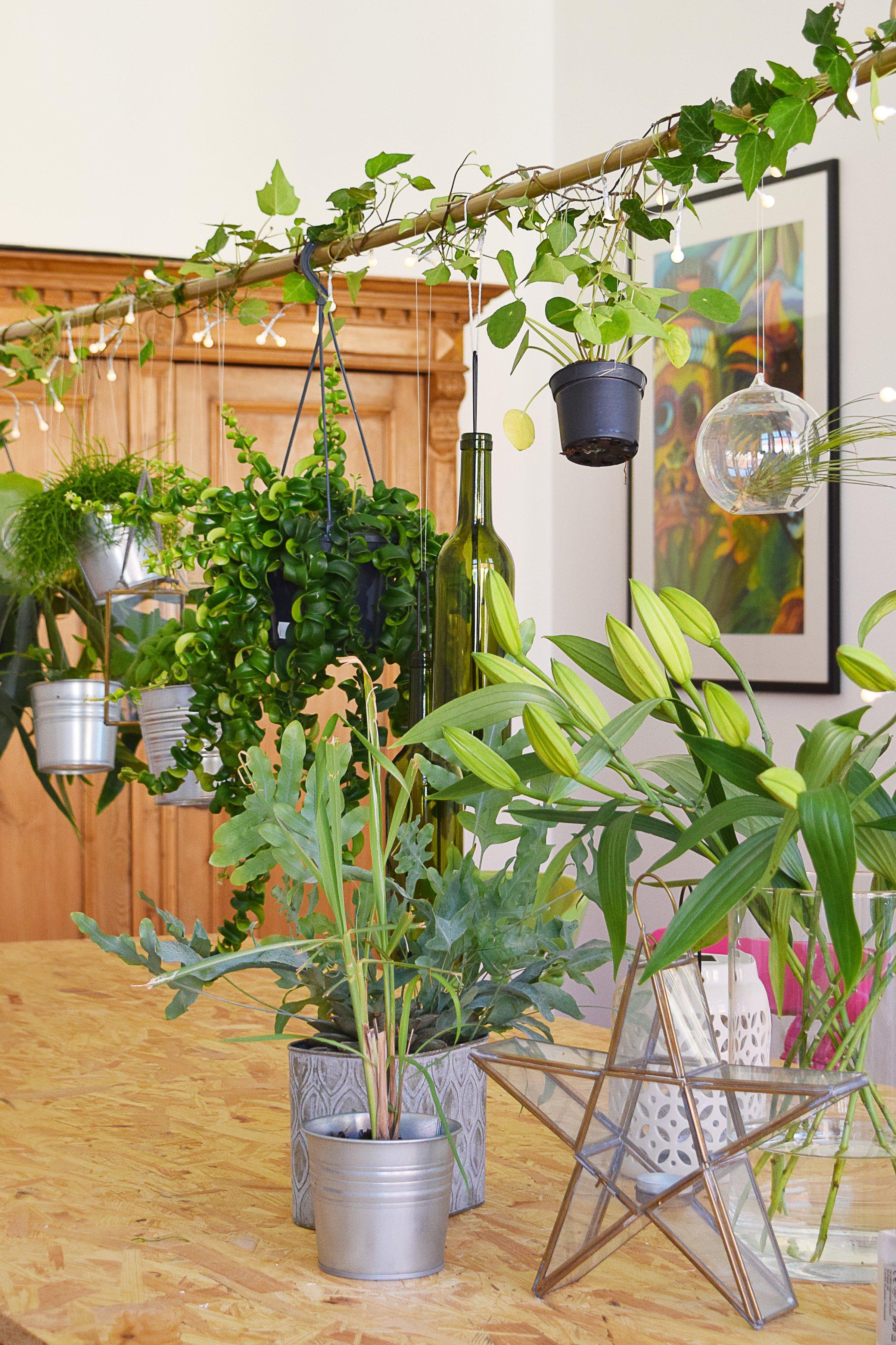 DIY Hanging Garden - Little House On The Corner