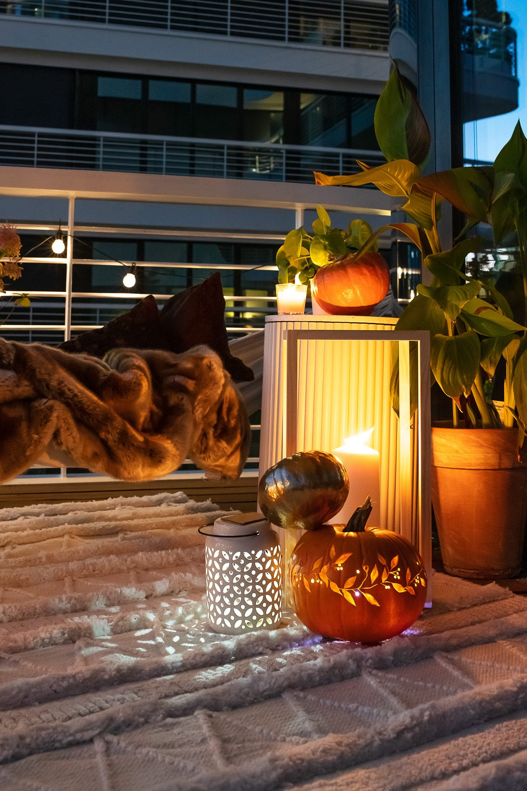 Autumn Balcony with Lantern and Pumpkins