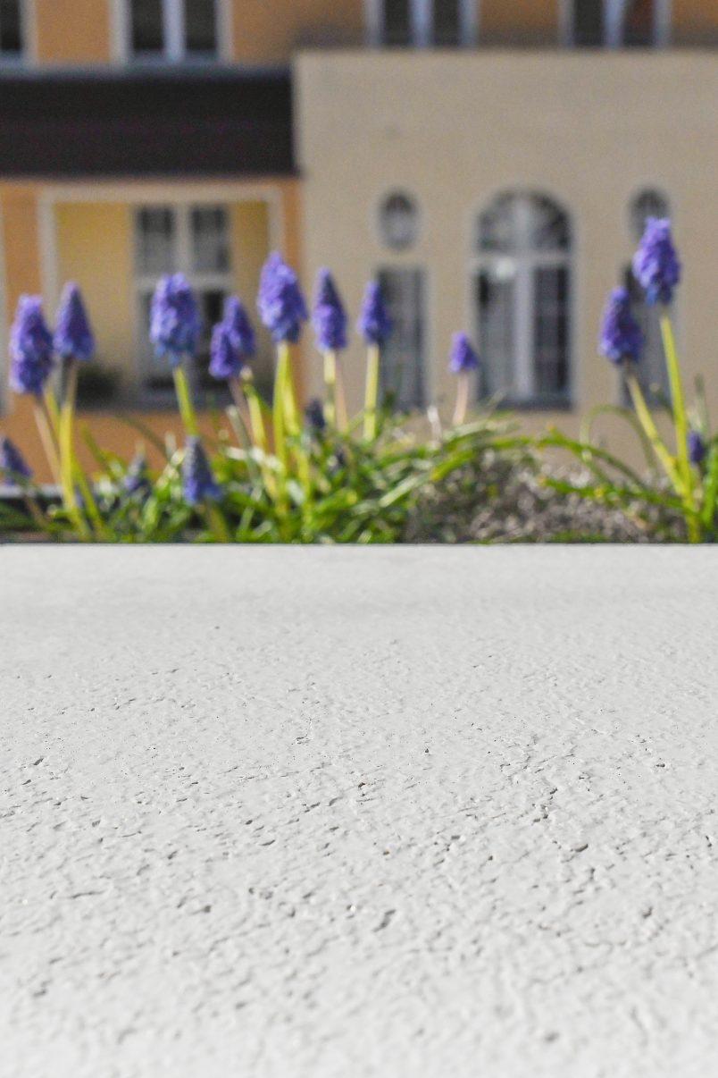Unpolished Concrete Surface