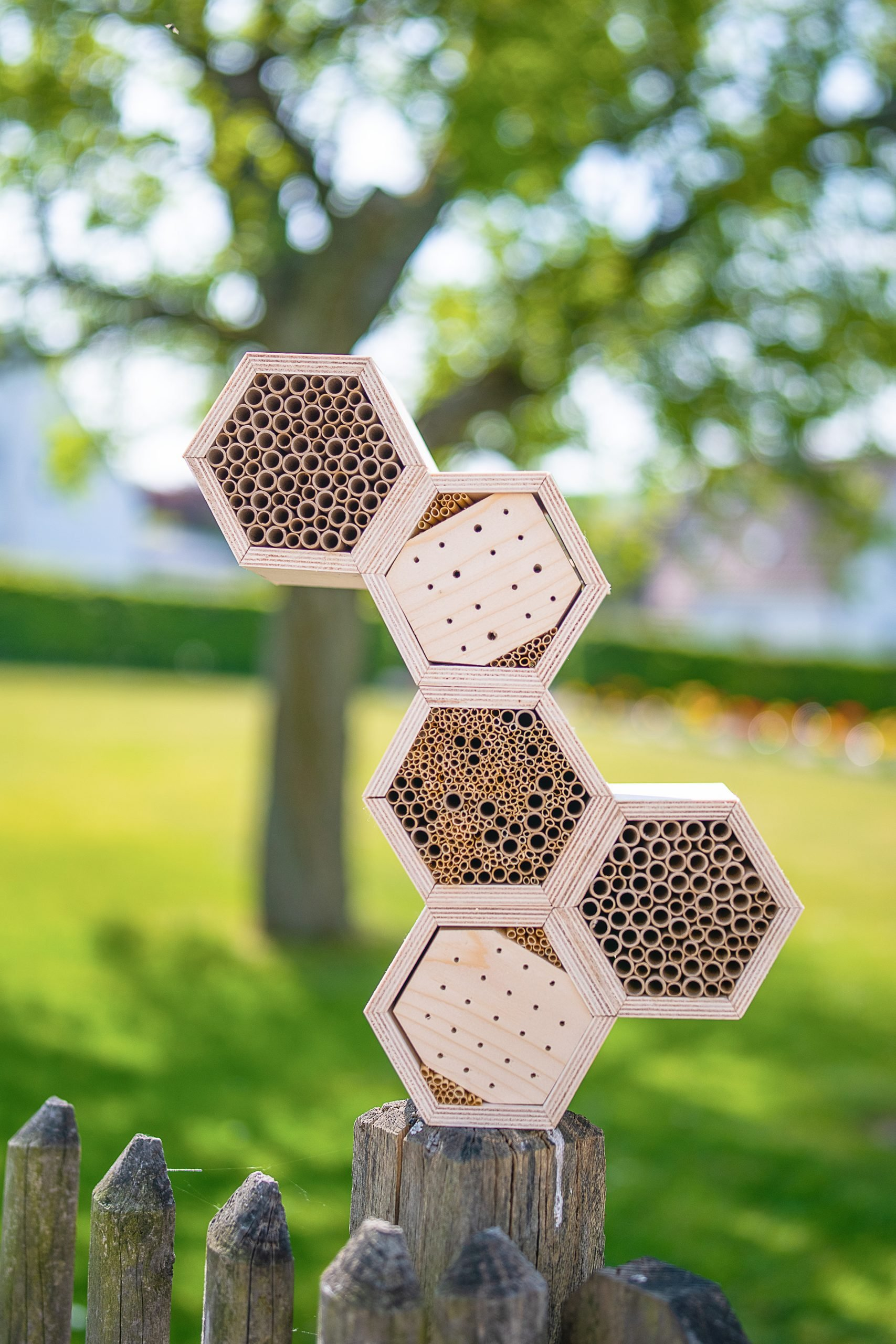 How To Build An Insect Hotel
